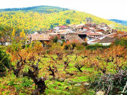 800-Jardines-del-Robledo