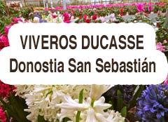 Viveros Ducasse