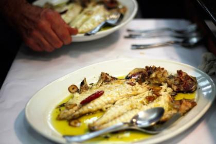 Jaiegun handia Tolosan: gastronomia, musika eta landare erakusketa ikusgarria