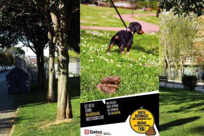 Foto-Getxo-campaña-perros-en-arbol