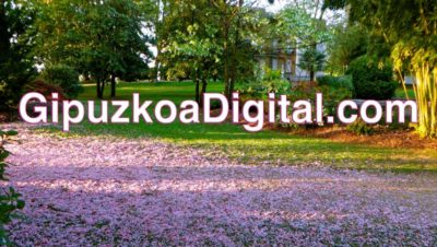 Rafa Marquez. Digital Marketing Manager. Gestión de presencia en redes sociales… Facebook y Twitter para empresas en Gipuzkoa: rafamarquez@gipuzkoadigital.com LOCAL DIGITAL Comunicar para vender más.
