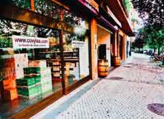Covylsa